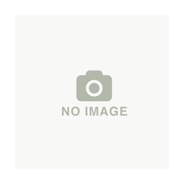 【OREC/オーレック】エースローター AR450・AR650用 アタッチメント 『中耕ローターセット』〈品番0010-80000〉[耕耘機 管理機 耕うん機]