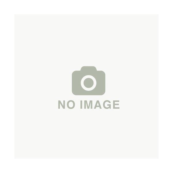 【OREC/オーレック】エースローター AR606N用 アタッチメント 『硬土用 溝掘ローター KW200B-10P』〈品番0037-81000〉[耕耘機 管理機 耕うん機]