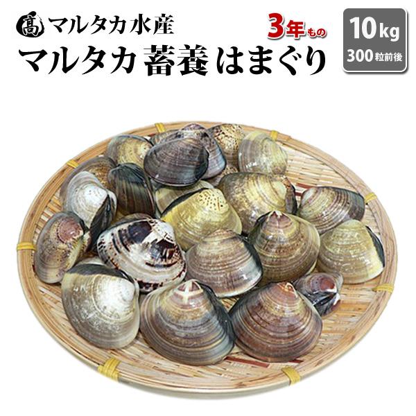 【送料無料】【業務用】大人買い蓄養はまぐり 3年もの4cm~5cmサイズ蛤(ハマグリ)10kg(300粒前後)入♯貝 はまぐり ハマグリ 蛤 バーベキュー 海鮮 海鮮バーベキュー 直送