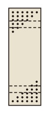 【送料無料】【メーカー取寄品(代引き決済時、要問合せ)】サカエ パンチングウォールシステム(品番:PO-301LN)『132141』パネルハンガー・パーティション