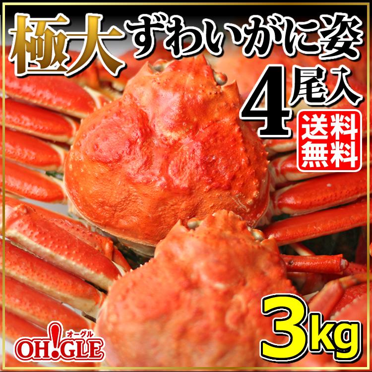 極大ずわいがに姿 3kg 4尾入【送料無料】【あす楽対応】