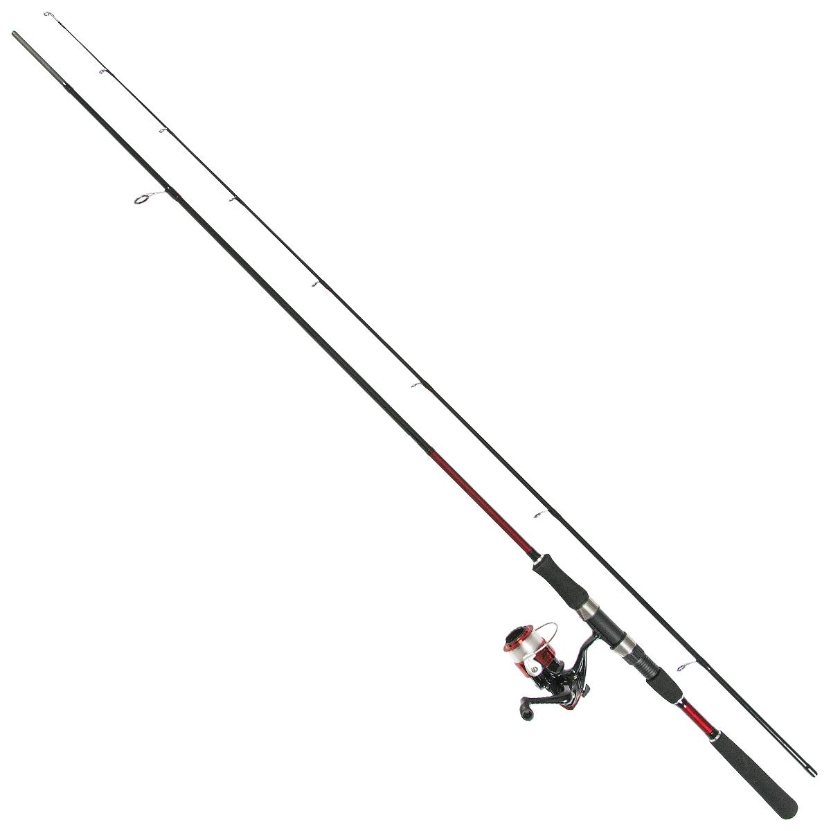 エギング セット 8.6フィート 同梱不可 人気の定番 スピニングリール付き 送料無料(一部地域を除く) 釣り竿
