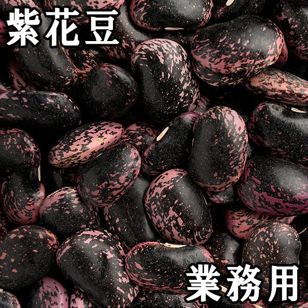 紫花豆 (紫花いんげん) (25kg業務用) 30年産 北海道