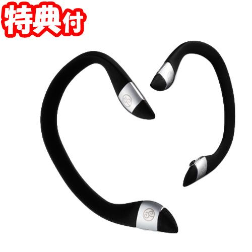 エイベックス ビューティーメソッド イヤーアップ 美顔器 avex ear up 日本製 耳にかける美顔器 60ミリステラの磁石搭載 耳ツボ刺激 耳周辺のつぼ刺激 ビューティメソッド 効果 へ