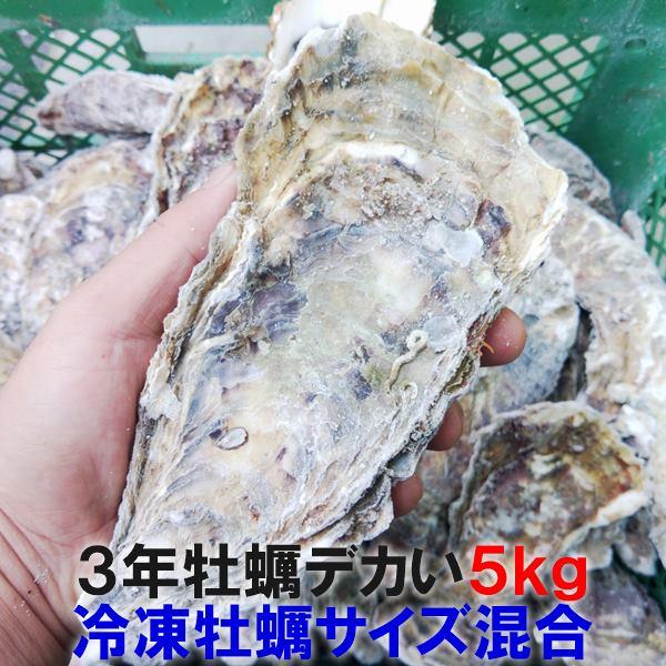 牡蠣の本場松島より完全漁師直送です 直輸入品激安 生出荷の際はカキランキング 殻付き 独占させていただいておりました 30%クーポン有の新商品 デカい牡蠣 牡蠣 あす楽対応 3年牡蠣 5kg 冷凍便 まとめ買い特価 送料無料 5キロ 宮城県産 殻付き牡蠣 母の日 牡蛎 無選別牡蠣 SDGs 牡蠣通販 カキ 加熱用 バーベキュー食材 父の日 お歳暮 海産物 お中元 松島牡蠣屋 殻付 BBQ