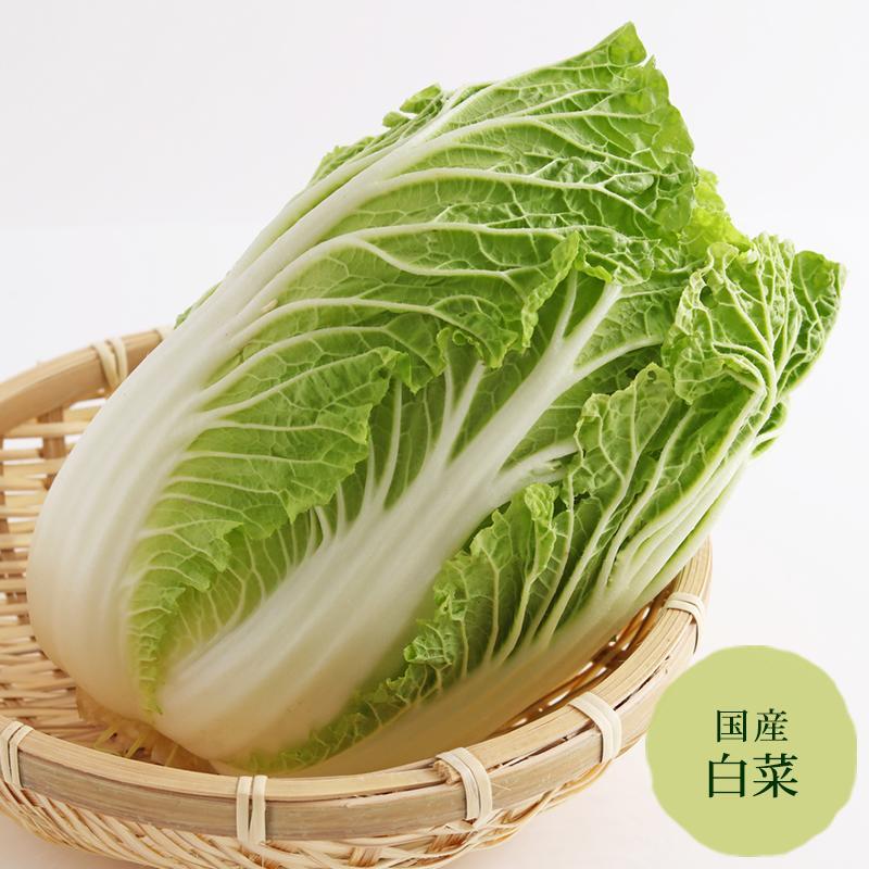 みずみずしくて低カロリー 白菜 長崎 鹿児島産等 野菜セット同梱で送料無料 SALE おすすめ
