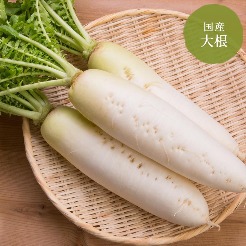 ビタミンCと食物繊維が豊富 大根 北海道 大好評です 青森産 Seasonal Wrap入荷 野菜セット同梱で送料無料