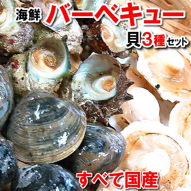 いつでも楽しめる 国産にこだわった魚介 日本未発売 送料無料 国産 貝類3種の海鮮バーベキューセット ◆高品質 冷凍 ホタテ 片貝 ホンビノスの3種の貝のセットです kb さざえ サザエ 帆立 smtb-k bbq ほたて
