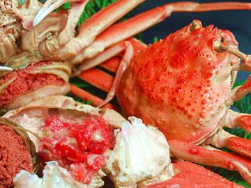 漁期2ヶ月の蟹がいつでも味わえる♪ 【送料無料】子持ちがに(訳あり)【ボイル・冷凍】中 5匹入【浜坂産】【同梱不可】(親ガニ、親がに、せこがに、セコガニ、香箱蟹、こっぺがに、コッペガニ、松葉ガニ)