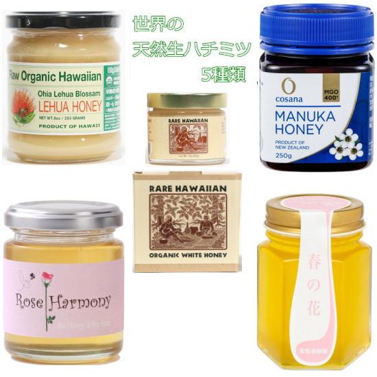 数量限定 ハワイ NZ ギリシャ 日本産 世界の天然生蜂蜜 生はちみつ 5点セット 世界のはちみつ 倉 250g ホワイトハニー85g 酵素そのままの世界の天然生ハチミツです 春の花300g 5種類の100%オーガニックな糖分 マヌカハニー400 有機レフアハニー255g 買収 ローズハーモニー120g