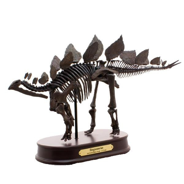 ステゴサウルス スケルトンモデル FDS604/BR(70104)