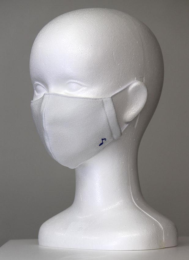 bird flu and virus mask