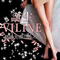 *送料無料*【3個セット】VILINE~ヴィライン~