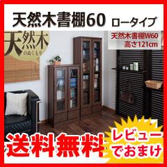 ガラス扉 本棚 天然木書棚60 ロータイプの通販【送料無料】