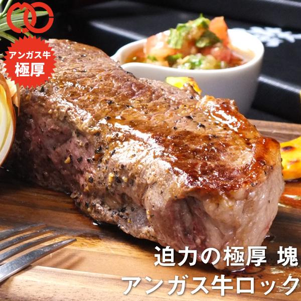 赤身 厚切り 1ポンド ステーキ (450g×20枚)【牛肉 ステーキ肉 ブロック 塊 赤身 バーベキュー 焼き肉】