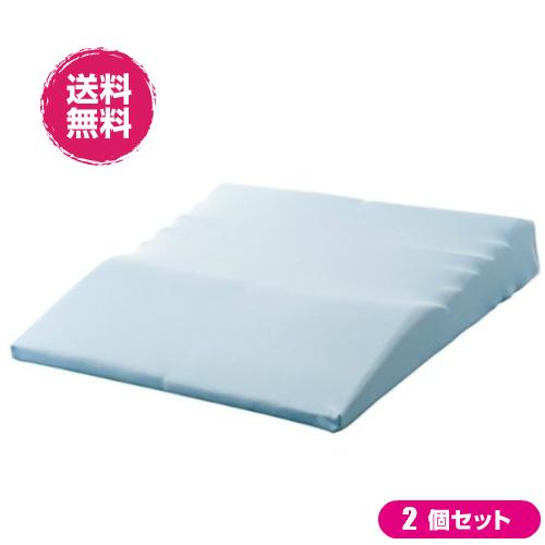 【D会員4倍】整体師さんの腰まで楽寝マット 2個セット