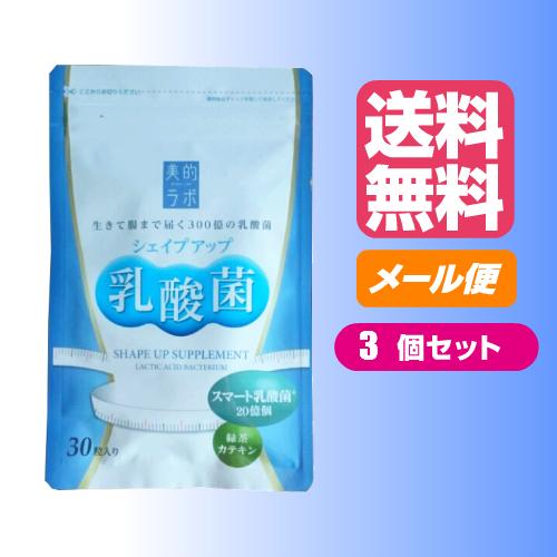 お得な3袋セット シェイプアップ乳酸菌 30粒
