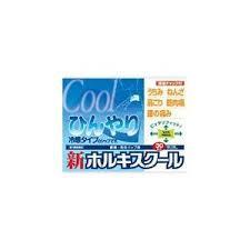 【第3類医薬品】送料無料 10個セット 新ホルキスクール 30枚入(6枚×5袋)x10
