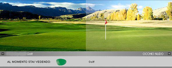 RUDY PROJECT SYNFORMルディプロジェクト シンフォーム調光ゴルフスペアレンズ 1組
