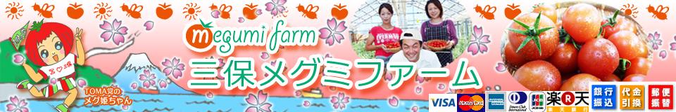 三保メグミファーム:農園から食卓へ安心・安全・新鮮な野菜をお届けいたします!