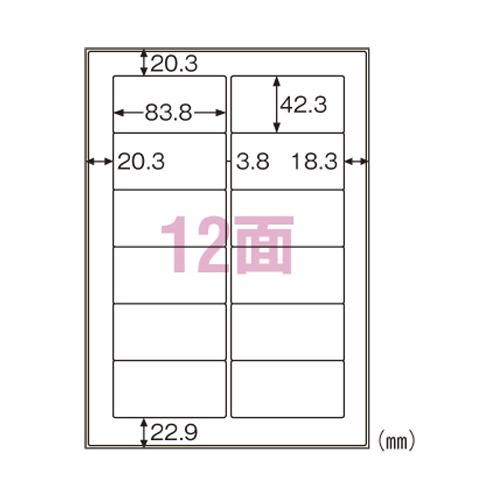 【まとめ買い10個セット品】屋外用ラベル 粗い面対応 KLPB861S 10枚 ヒサゴ