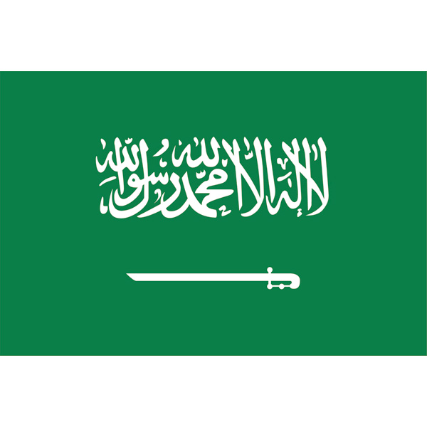 国旗 EXサウジアラビア 【 キャンセル/返品不可 】