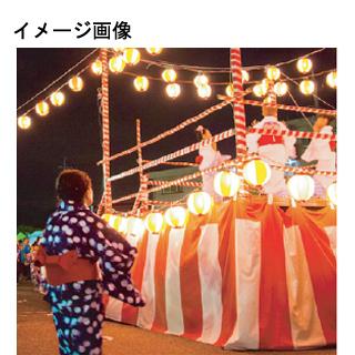 幕 天竺(プリント) 5間