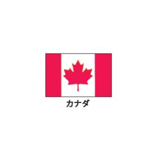 旗(世界の国旗) エクスラン国旗 カナダ 取り寄せ商品