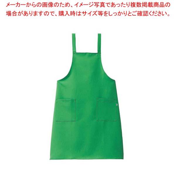 【まとめ買い10個セット品】 きれいなエプロン(光触媒加工)FR-9000 エメラルド