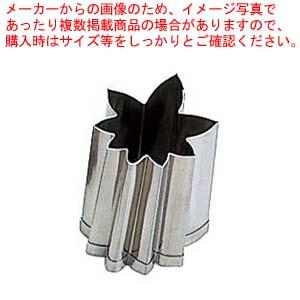 【まとめ買い10個セット品】 EBM 18-8 手造り業務用 抜型 5Pcs 秋 紅葉