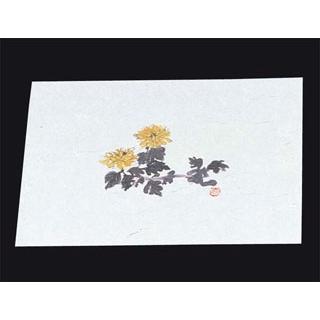【まとめ買い10個セット品】 四季紙 百寿(100枚入)M33-093 菊