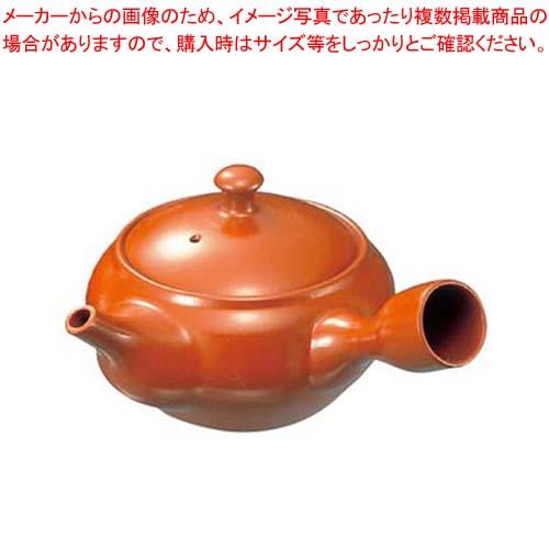 【まとめ買い10個セット品】 急須 F-6 2.7号 480cc 陶器製【 カフェ・サービス用品・トレー 】