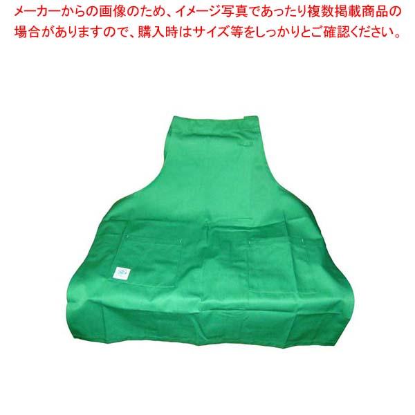 【まとめ買い10個セット品】 エコエプロン CT2415-4 フリー グリーン