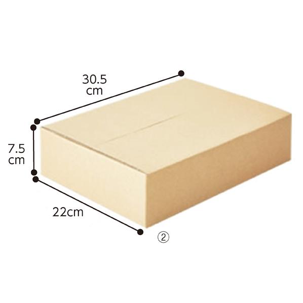 【まとめ買い10個セット品】 宅配用ダンボール showrap60サイズ20セット