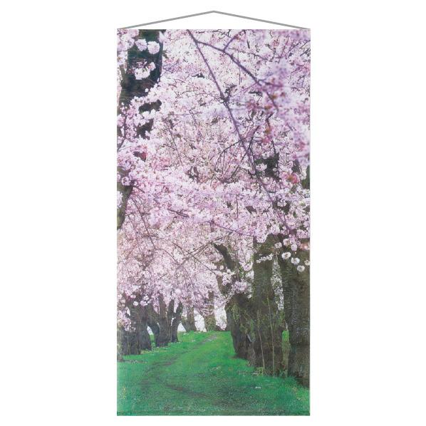 【まとめ買い10個セット品】 タペストリー 桜新緑1枚 【桜 サクラ さくら 春 飾り イベント 装飾】
