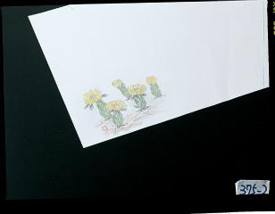 【まとめ買い10個セット品】和食器 敷紙100枚入 (2)福寿草(3~5月) 35S549-03B まごころ第35集 【キャンセル/返品不可】