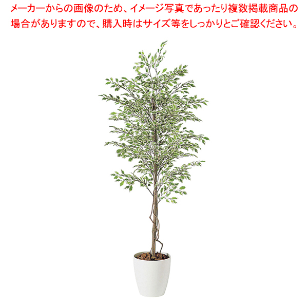 限定Special Price SG ベンジャミナ スターライト 90720 1.5m 人工樹木 作り物 厨房用品 小物 卓出 料理道具 調理器具 作業