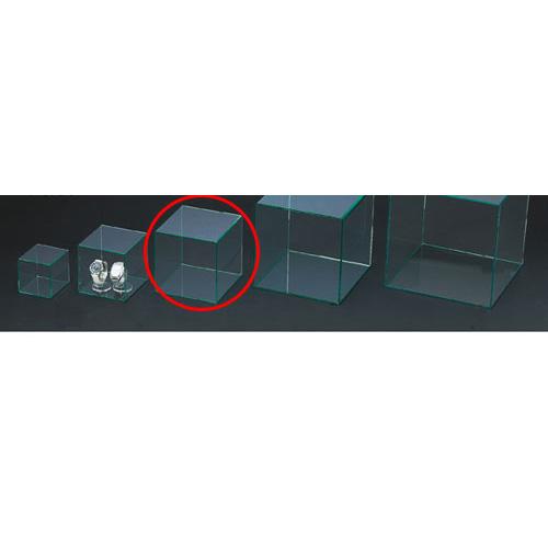 【まとめ買い10個セット品】アクリル4面ボックス グリーンエッジ 18cm角【 店舗什器 小物 ディスプレー パネル ディスプレー 棚 店舗備品 】