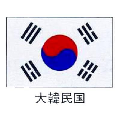 旗 世界の国旗 大韓民国 70×105 【 キャンセル/返品不可 】 【 業務用 】 メイチョー