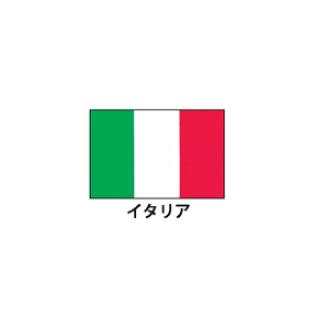 旗(世界の国旗) エクスラン国旗 イタリア 取り寄せ商品