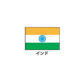 旗(世界の国旗) エクスラン国旗 インド 取り寄せ商品