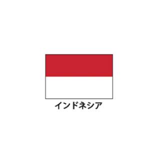 旗(世界の国旗) エクスラン国旗 インドネシア 取り寄せ商品