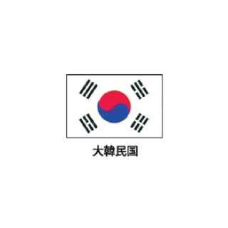 旗(世界の国旗) エクスラン国旗 大韓民国 取り寄せ商品