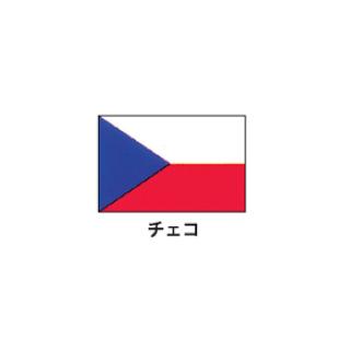 旗(世界の国旗) エクスラン国旗 チェコ 取り寄せ商品