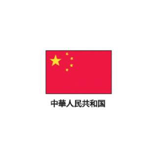 旗(世界の国旗) エクスラン国旗 中華人民共和国 取り寄せ商品