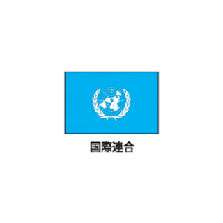 旗(世界の国旗) エクスラン国旗 国連 取り寄せ商品