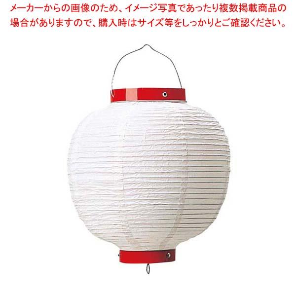 【まとめ買い10個セット品】 丸 ビニール提灯 無地 13号 白 φ340×H460 メイチョー