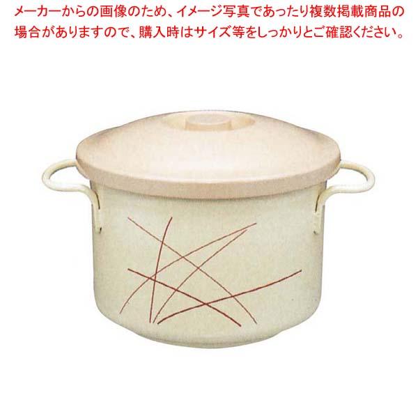 サーモス 高性能保温汁容器 シャトルスープ GBF-25NAG ナゴミ 【メイチョー】