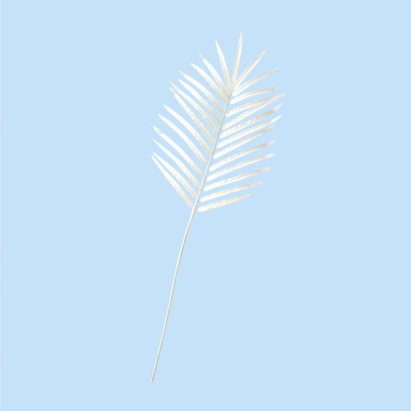 【まとめ買い10個セット品】 アレカパームリーフ ホワイト1枚 【メイチョー】