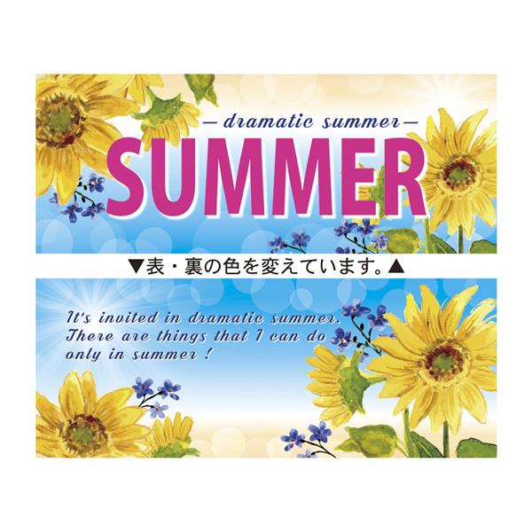 【まとめ買い10個セット品】 SUMMER パラポスター10枚 【メイチョー】